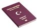 الجنسية التركية من مجموعة نورين الدولية